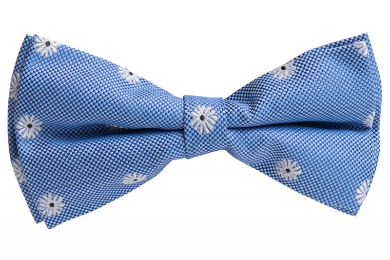 Papion albastru cu flori