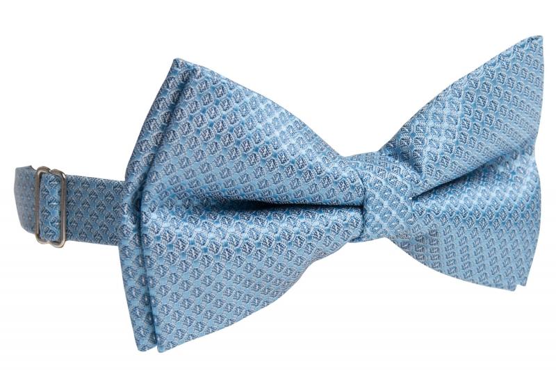 Papion bleu